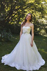 Brides in Weddings Dress
